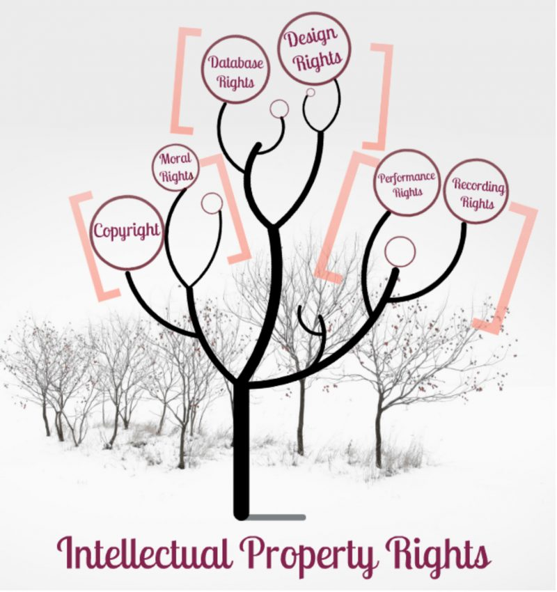 Pakistan removed from Priority Watch List on Intellectual Property Rights