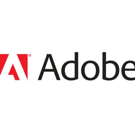 ADOBE IS NOW WAGED ON CREATING LIFELIKE 3D- DIGITAL PAINTS