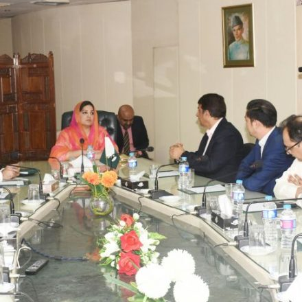 Chinese Delegation Calls on Anusha Rehman