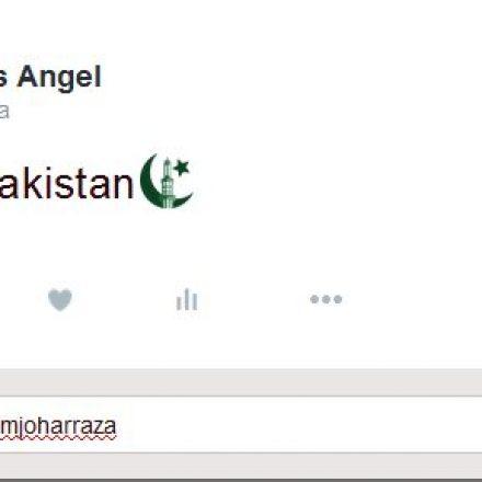 Twitter Introduces Pakistan's Custom Emoji
