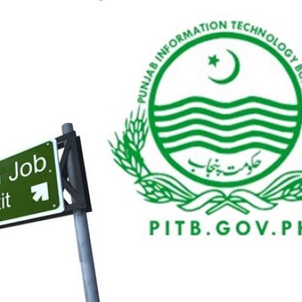 PITB is now hiring IT professionals for several vacant positions in 286 Tehsils