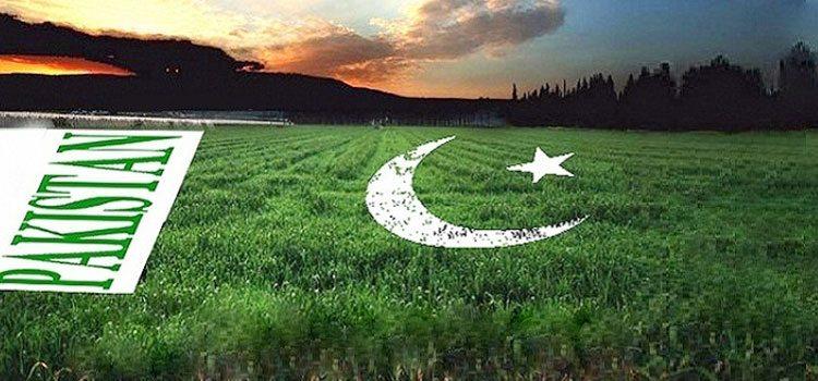 DIGIMARK 2017 – Shaping the Digital Journey of Pakistan