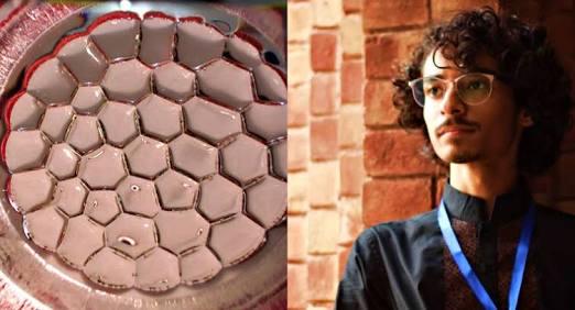 Shaheer Niazi's Electric Honeycomb Research is making us Pakistan proud