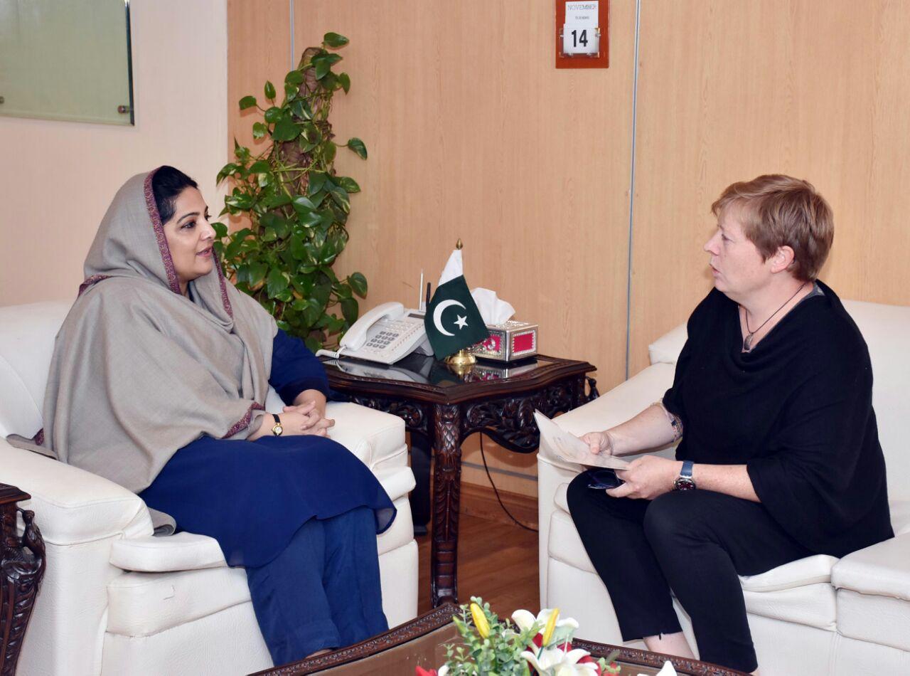 Swedish Ambassador called on Anusha Rehman