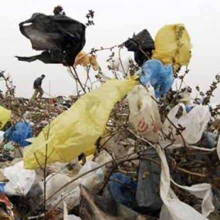 Ban on Plastic Bags is violation of fundamental rights say protestants