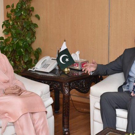 UN women delegation calls on Anusha Rehman