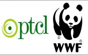 PTCL & WWF-Pakistan conducts Spellathon in less-privileged schools
