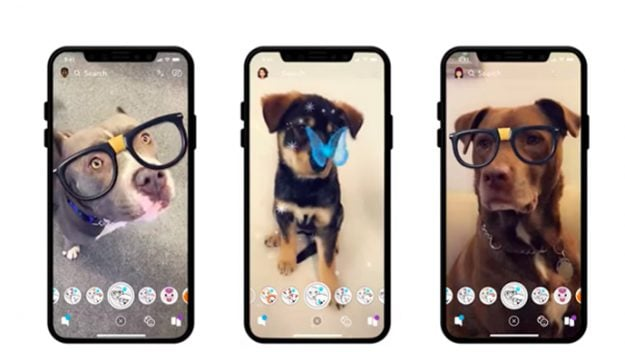 Dog lenses revealed by Snapchat