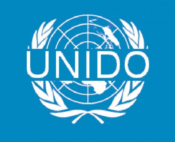 Consultative session held on Energy Efficiency arranged by UNIDO jointly with Prime Minister's task force on energy reforms