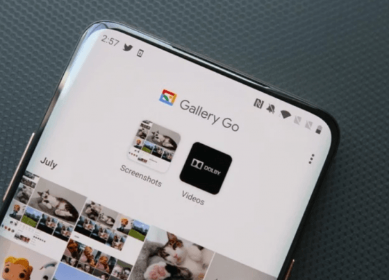 New App from Google uses machine learning to automatically organise your photos