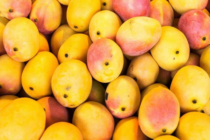 Pakistani mango exports could suffer serious setback during Covid-19 pandemic due to questionable conduct of DPP officials
