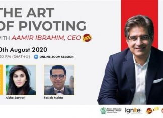 The Art of Pivoting Webinar Addresses Survival and Revival Strategies for Startups