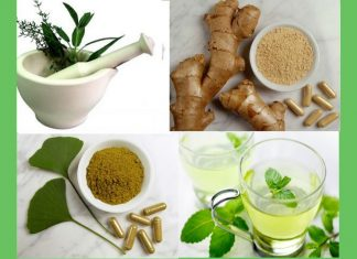 Herbal Medicine For Stomach
