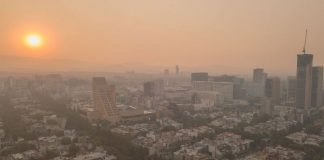 How Smog and Pollution Affect on Health