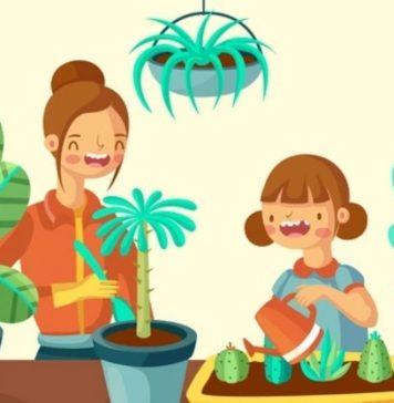 How to Start a Nurturing Nursery Garden